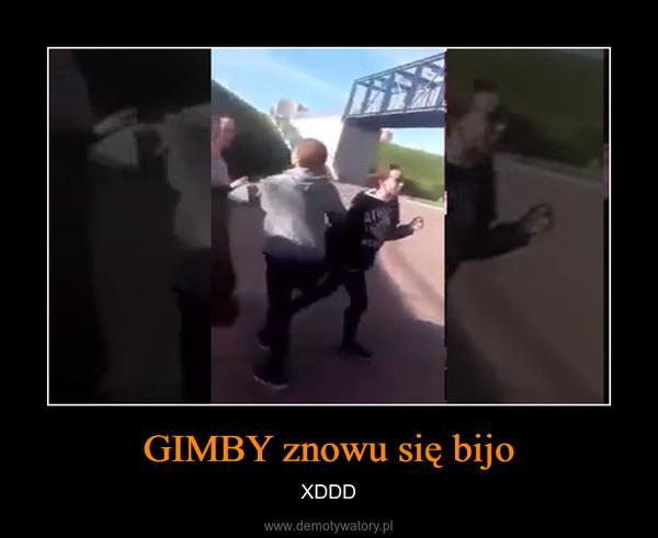 GIMBY znowu się bijo – XDDD