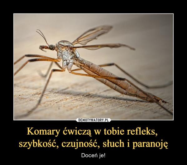 Komary ćwiczą w tobie refleks, szybkość, czujność, słuch i paranoję – Doceń je!