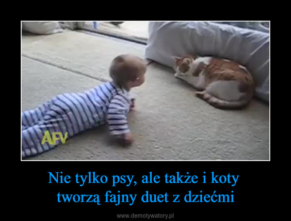 Nie tylko psy, ale także i koty tworzą fajny duet z dziećmi –