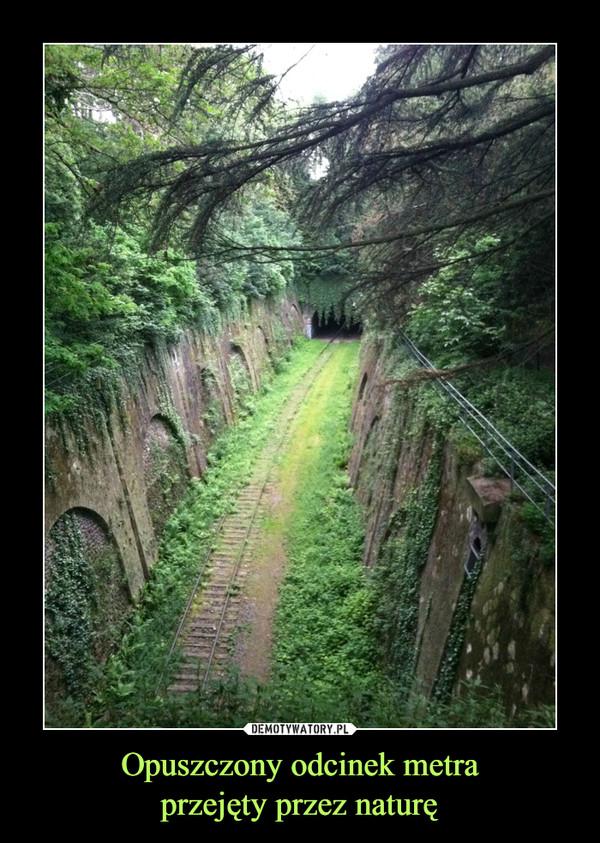 Opuszczony odcinek metraprzejęty przez naturę –