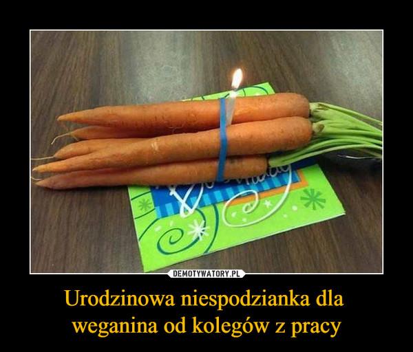 Urodzinowa niespodzianka dla weganina od kolegów z pracy –