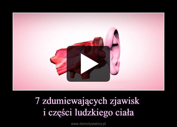 7 zdumiewających zjawisk i części ludzkiego ciała –