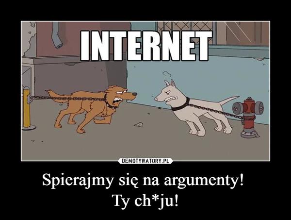 Spierajmy się na argumenty! Ty ch*ju! –  internet