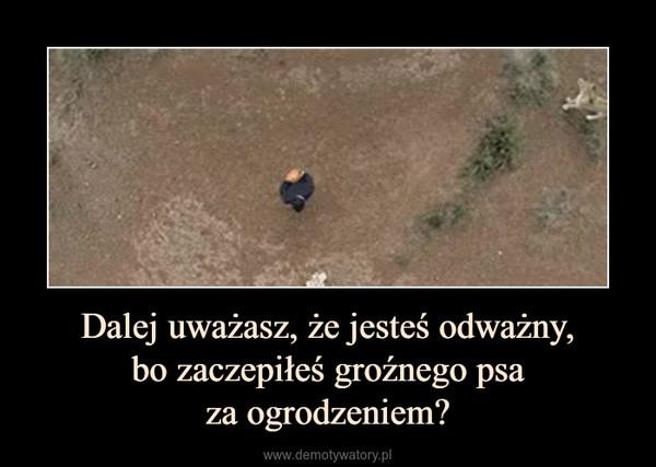 Dalej uważasz, że jesteś odważny,bo zaczepiłeś groźnego psaza ogrodzeniem? –