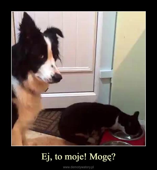 Ej, to moje! Mogę? –
