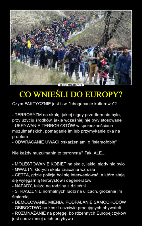 CO WNIEŚLI DO EUROPY?