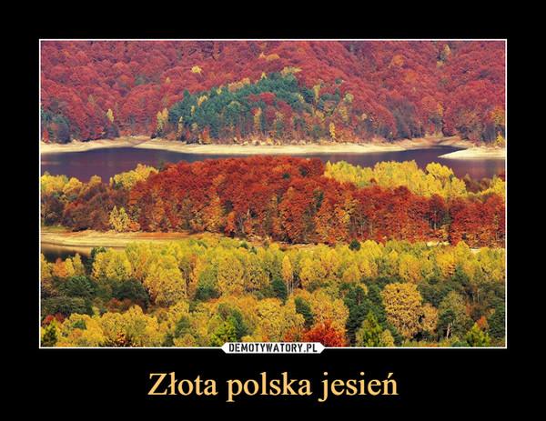 Złota polska jesień –