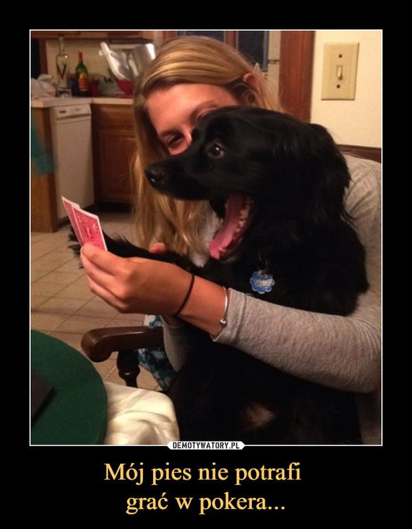 Mój pies nie potrafi grać w pokera... –