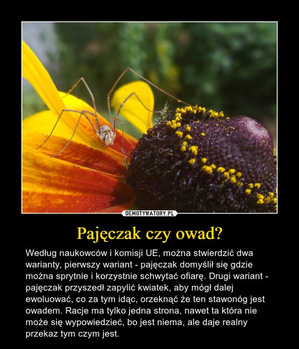 Pajęczak czy owad? – Według naukowców i komisji UE, można stwierdzić dwa warianty, pierwszy wariant - pajęczak domyślił się gdzie można sprytnie i korzystnie schwytać ofiarę. Drugi wariant - pajęczak przyszedł zapylić kwiatek, aby mógł dalej ewoluować, co za tym idąc, orzeknąć że ten stawonóg jest owadem. Racje ma tylko jedna strona, nawet ta która nie może się wypowiedzieć, bo jest niema, ale daje realny przekaz tym czym jest.