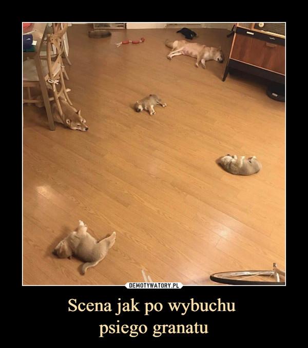 Scena jak po wybuchu psiego granatu –