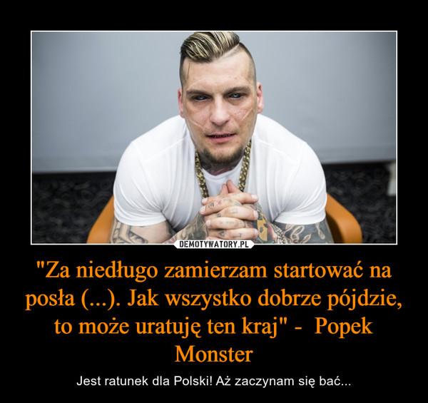 """""""Za niedługo zamierzam startować na posła (...). Jak wszystko dobrze pójdzie, to może uratuję ten kraj"""" -  Popek Monster – Jest ratunek dla Polski! Aż zaczynam się bać..."""