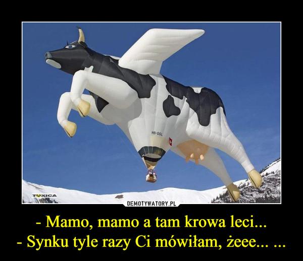 - Mamo, mamo a tam krowa leci...- Synku tyle razy Ci mówiłam, żeee... ... –