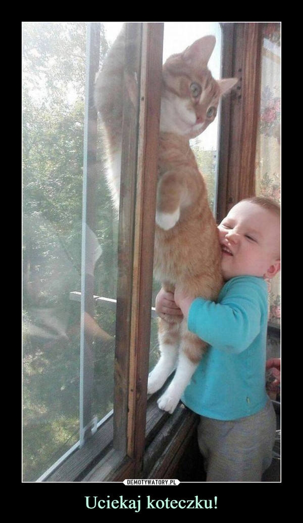 Uciekaj koteczku! –
