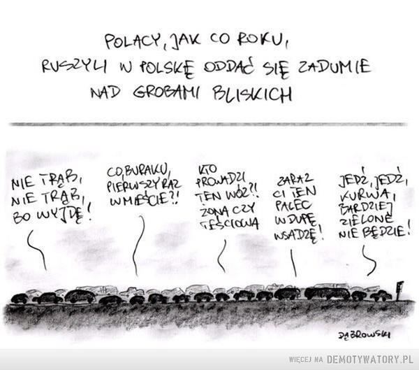 Wszystkich Świętych –  Polacy, jak co roku, ruszyli w Polskę oddać się zadumie nad grobami bliskich Nie trąb bo wyjdę Co buraku pierwszy raz w mieście? Kto prowadzi ten wóz? Zona czy teściowa? Zaraz ci ten palec w dupę wsadzę Jedź, jedź, kurwa, bardziej zielone nie będzie