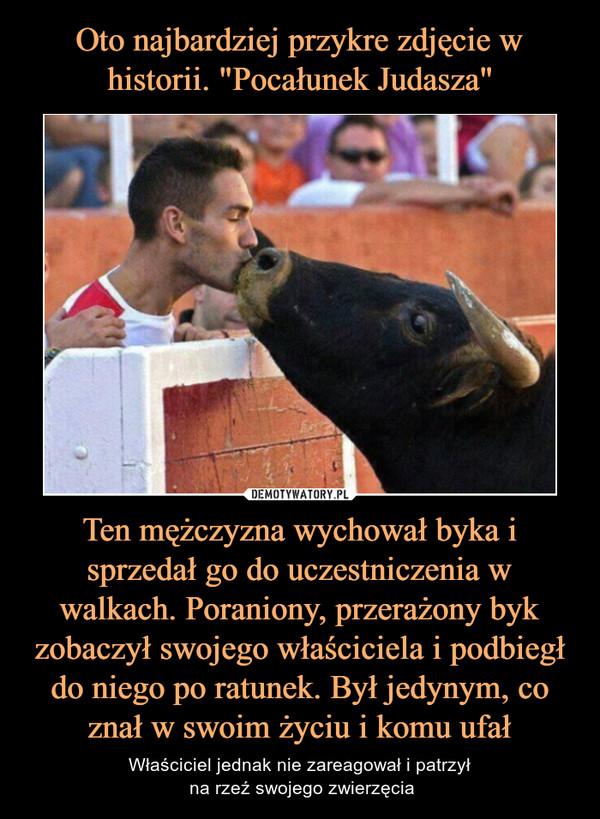 Ten mężczyzna wychował byka i sprzedał go do uczestniczenia w walkach. Poraniony, przerażony byk zobaczył swojego właściciela i podbiegł do niego po ratunek. Był jedynym, co znał w swoim życiu i komu ufał – Właściciel jednak nie zareagował i patrzył na rzeź swojego zwierzęcia
