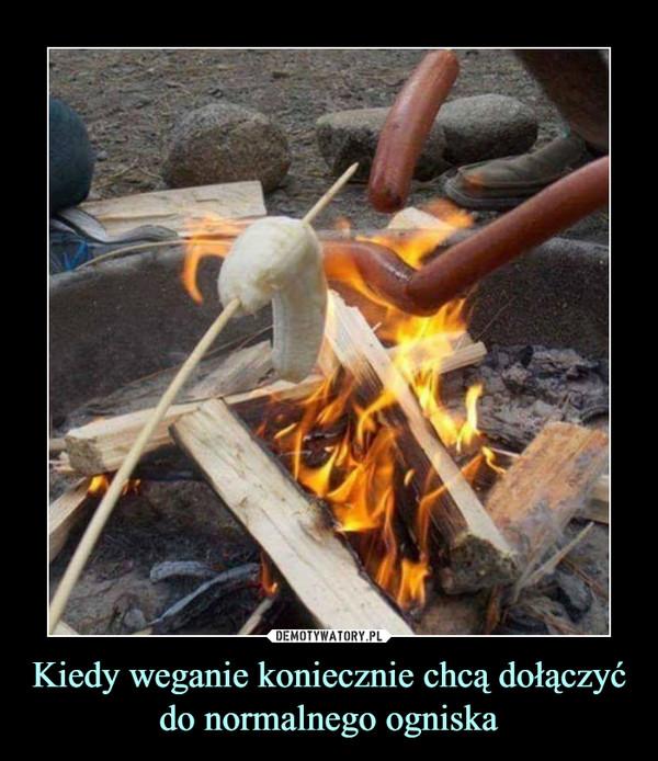 Kiedy weganie koniecznie chcą dołączyć do normalnego ogniska –