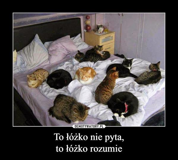 To łóżko nie pyta,to łóżko rozumie –