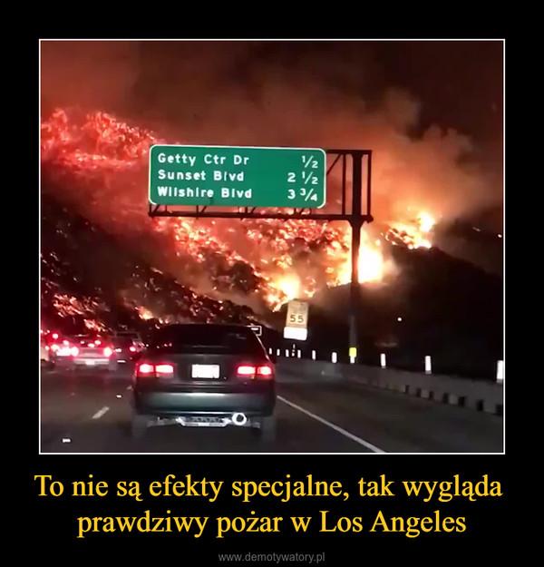 To nie są efekty specjalne, tak wygląda prawdziwy pożar w Los Angeles –