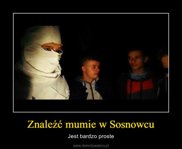 Znaleźć mumie w Sosnowcu – Jest bardzo proste