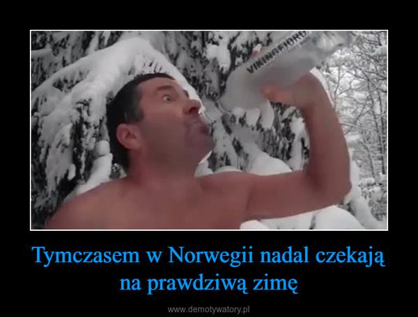 Tymczasem w Norwegii nadal czekają na prawdziwą zimę –