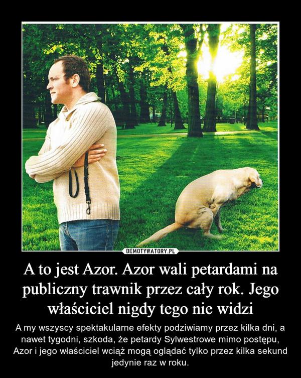 A to jest Azor. Azor wali petardami na publiczny trawnik przez cały rok. Jego właściciel nigdy tego nie widzi – A my wszyscy spektakularne efekty podziwiamy przez kilka dni, a nawet tygodni, szkoda, że petardy Sylwestrowe mimo postępu, Azor i jego właściciel wciąż mogą oglądać tylko przez kilka sekund jedynie raz w roku.