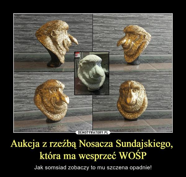 Aukcja z rzeźbą Nosacza Sundajskiego, która ma wesprzeć WOŚP – Jak somsiad zobaczy to mu szczena opadnie!