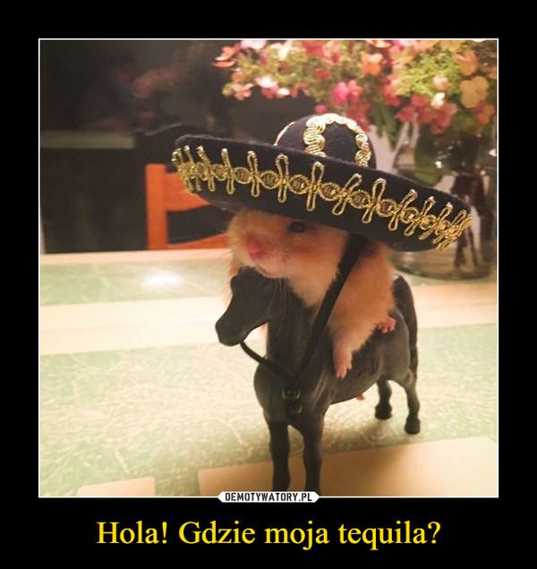 Hola! Gdzie moja tequila? –