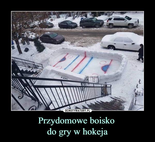 Przydomowe boisko do gry w hokeja –