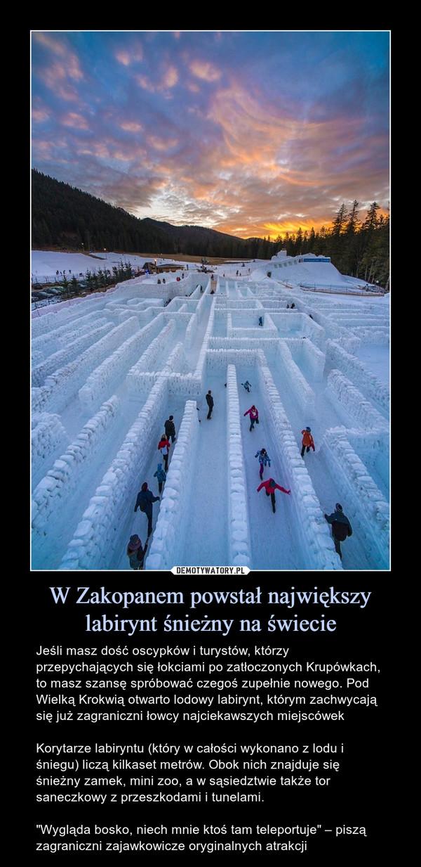 """W Zakopanem powstał największy labirynt śnieżny na świecie – Jeśli masz dość oscypków i turystów, którzy przepychających się łokciami po zatłoczonych Krupówkach, to masz szansę spróbować czegoś zupełnie nowego. Pod Wielką Krokwią otwarto lodowy labirynt, którym zachwycają się już zagraniczni łowcy najciekawszych miejscówekKorytarze labiryntu (który w całości wykonano z lodu i śniegu) liczą kilkaset metrów. Obok nich znajduje się śnieżny zamek, mini zoo, a w sąsiedztwie także tor saneczkowy z przeszkodami i tunelami.""""Wygląda bosko, niech mnie ktoś tam teleportuje"""" – piszą zagraniczni zajawkowicze oryginalnych atrakcji"""