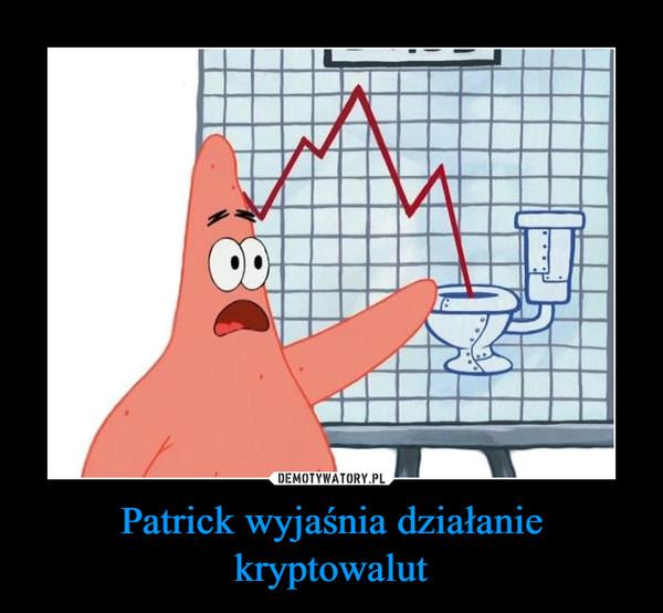 Patrick wyjaśnia działanie kryptowalut –
