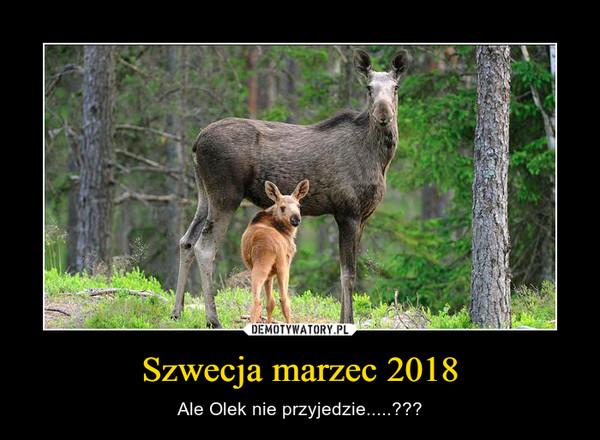 Szwecja marzec 2018 – Ale Olek nie przyjedzie.....???
