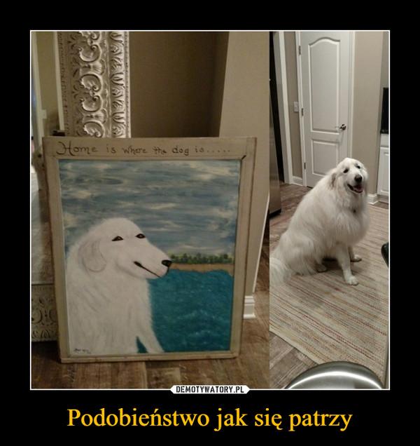 Podobieństwo jak się patrzy –