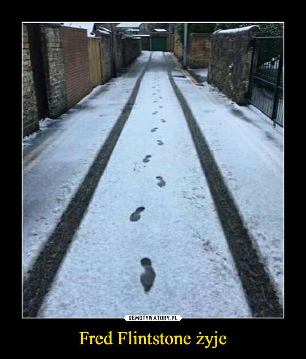 Fred Flintstone żyje –