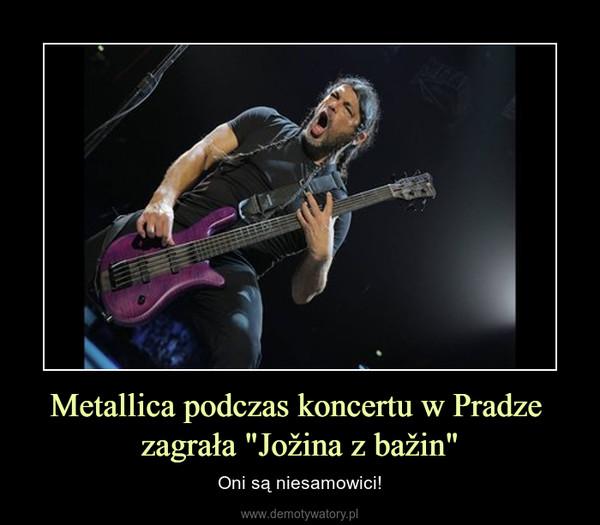 """Metallica podczas koncertu w Pradze zagrała """"Jožina z bažin"""" – Oni są niesamowici!"""