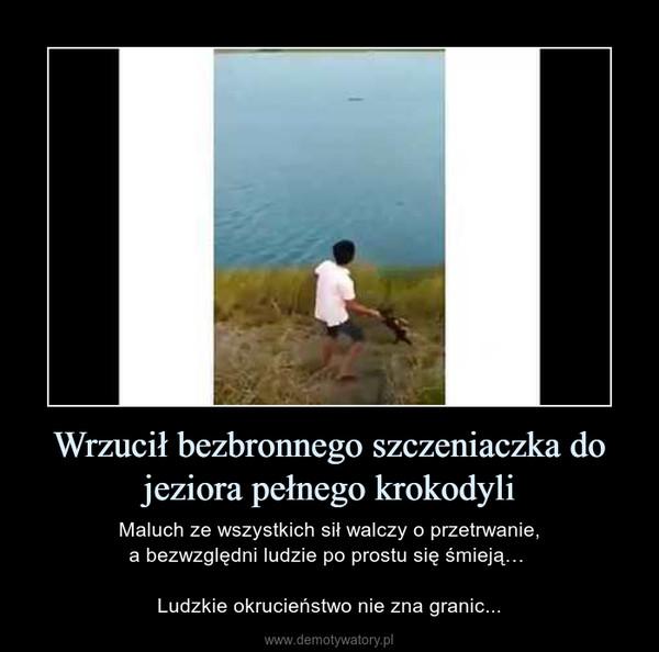 Wrzucił bezbronnego szczeniaczka do jeziora pełnego krokodyli – Maluch ze wszystkich sił walczy o przetrwanie,a bezwzględni ludzie po prostu się śmieją… Ludzkie okrucieństwo nie zna granic...