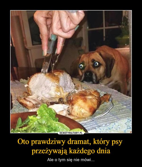 Oto prawdziwy dramat, który psy przeżywają każdego dnia – Ale o tym się nie mówi...