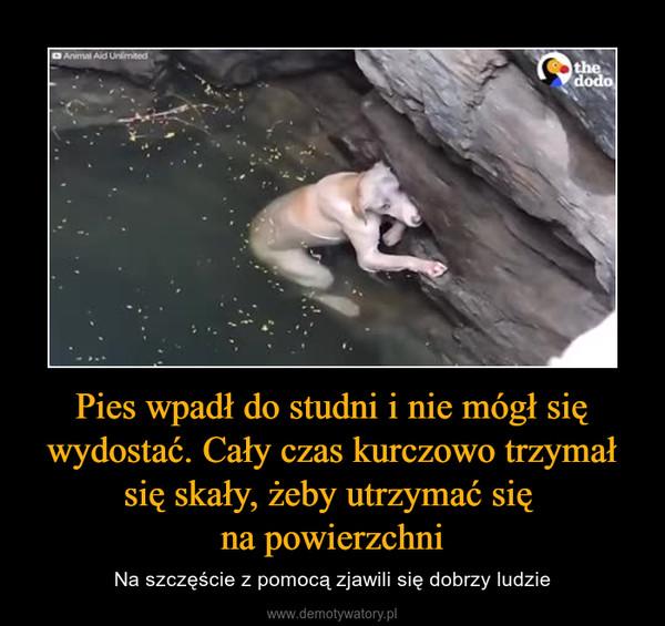 Pies wpadł do studni i nie mógł się wydostać. Cały czas kurczowo trzymał się skały, żeby utrzymać się na powierzchni – Na szczęście z pomocą zjawili się dobrzy ludzie