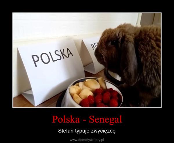 Polska - Senegal – Stefan typuje zwycięzcę