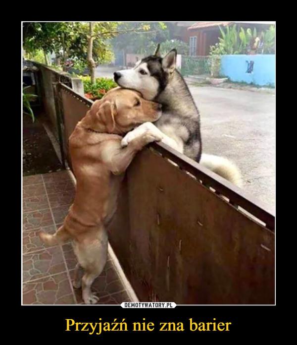 Przyjaźń nie zna barier –