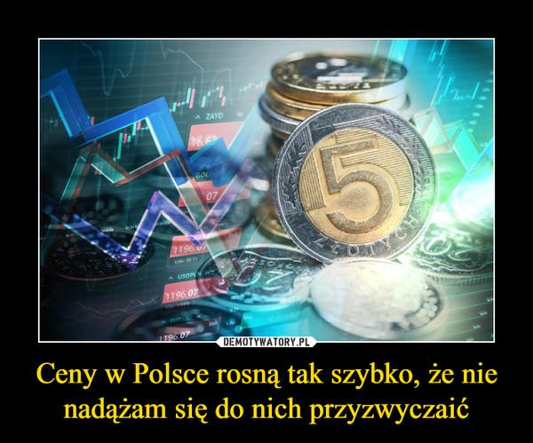 Ceny w Polsce rosną tak szybko, że nie nadążam się do nich przyzwyczaić –