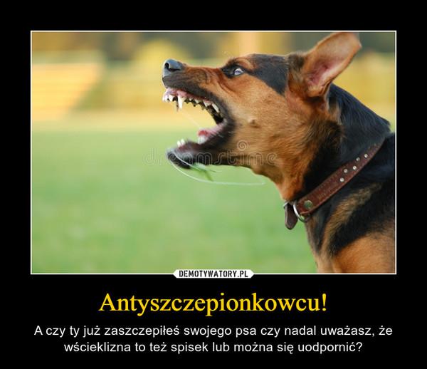 Antyszczepionkowcu! – A czy ty już zaszczepiłeś swojego psa czy nadal uważasz, że wścieklizna to też spisek lub można się uodpornić?