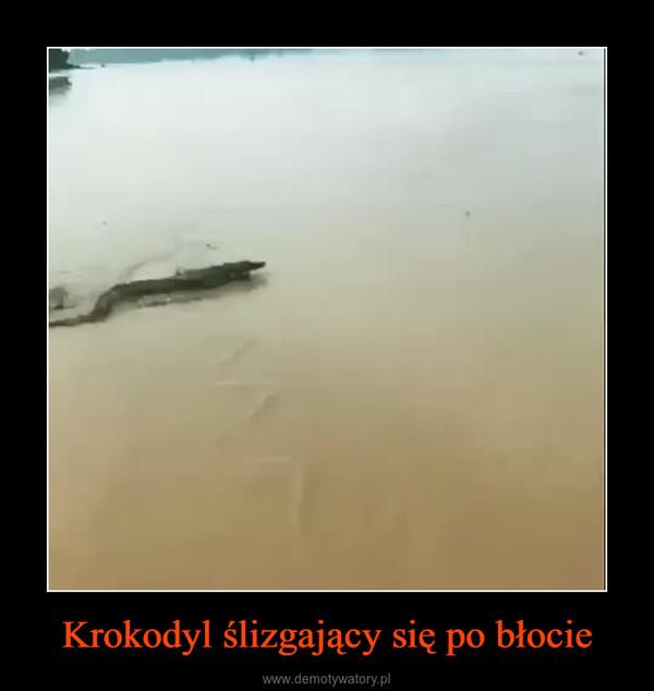 Krokodyl ślizgający się po błocie –