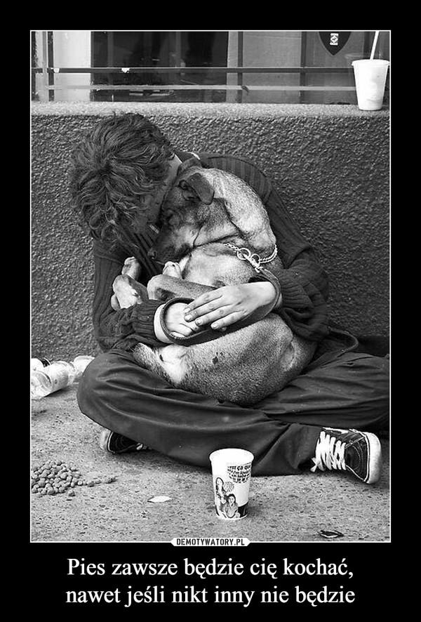 Pies zawsze będzie cię kochać,nawet jeśli nikt inny nie będzie –