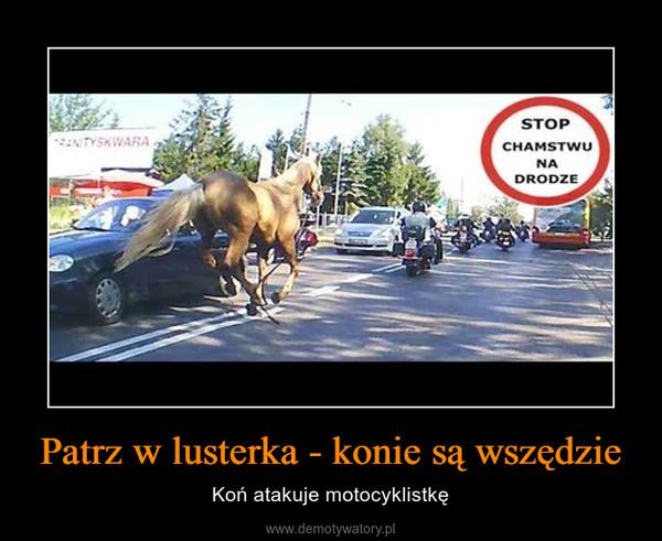 Patrz w lusterka - konie są wszędzie – Koń atakuje motocyklistkę