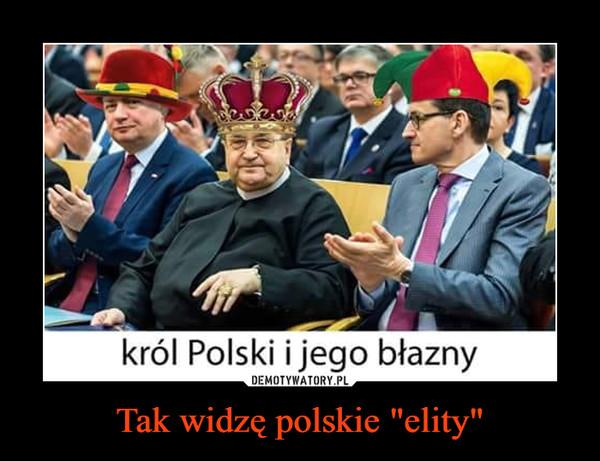 """Tak widzę polskie """"elity"""" –"""