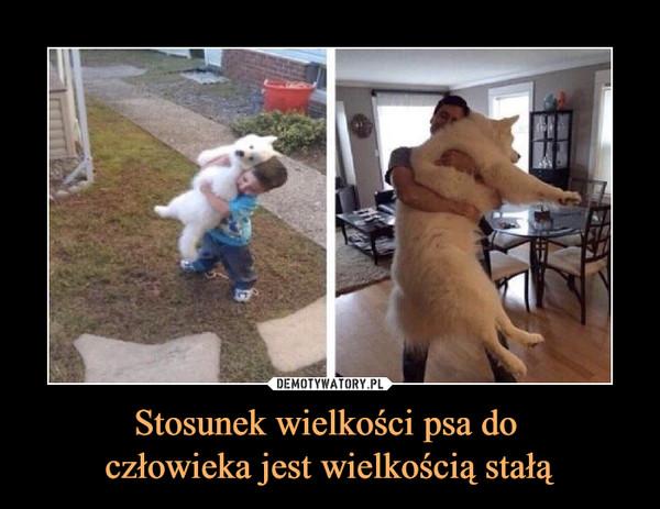Stosunek wielkości psa do człowieka jest wielkością stałą –