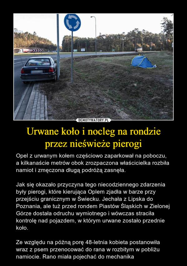 Urwane koło i nocleg na rondzieprzez nieświeże pierogi – Opel z urwanym kołem częściowo zaparkował na poboczu, a kilkanaście metrów obok zrozpaczona właścicielka rozbiła namiot i zmęczona długą podróżą zasnęła.Jak się okazało przyczyna tego niecodziennego zdarzenia były pierogi, które kierująca Oplem zjadła w barze przy przejściu granicznym w Świecku. Jechała z Lipska do Poznania, ale tuż przed rondem Piastów Śląskich w Zielonej Górze dostała odruchu wymiotnego i wówczas straciła kontrolę nad pojazdem, w którym urwane zostało przednie koło.Ze względu na późną porę 48-letnia kobieta postanowiła wraz z psem przenocować do rana w rozbitym w pobliżu namiocie. Rano miała pojechać do mechanika