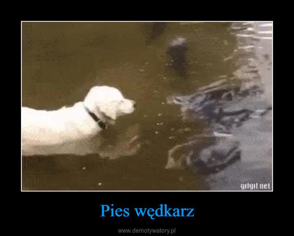 Pies wędkarz –