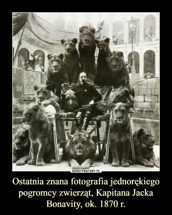 Ostatnia znana fotografia jednorękiego pogromcy zwierząt, Kapitana Jacka Bonavity, ok. 1870 r. –