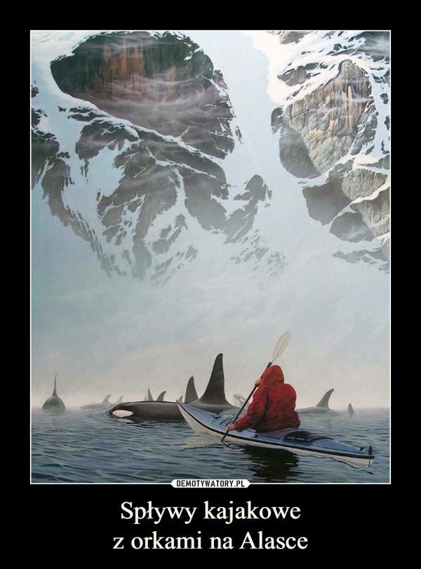 Spływy kajakowez orkami na Alasce –